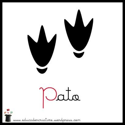 pato1