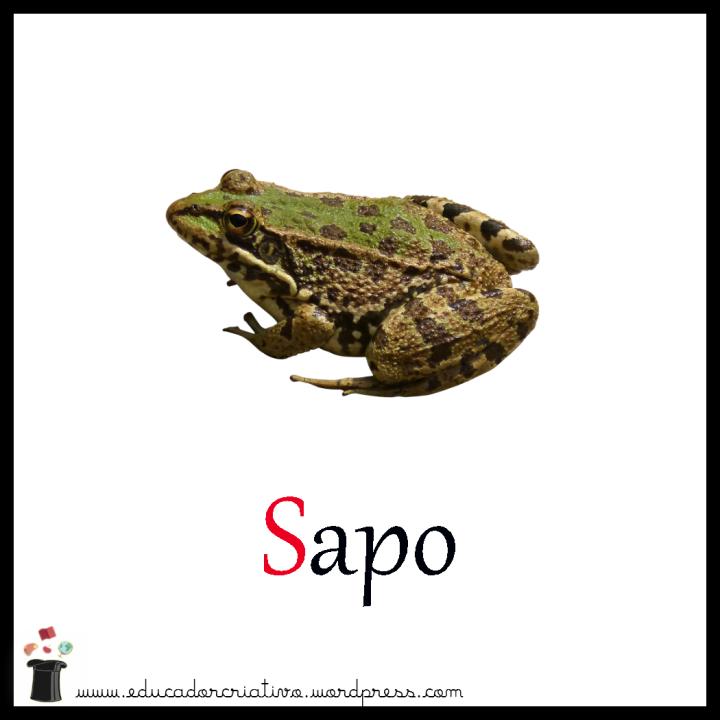 sapo2